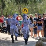 Zebras Melbourne