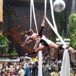 Brisbane Aerial Duo Tissue Silks 1