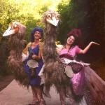 Emu's formal