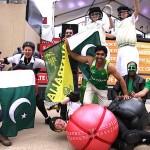 Cricket roving & fans